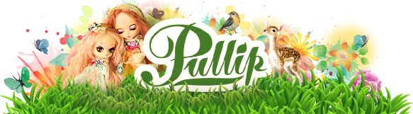 Pullipmall.net